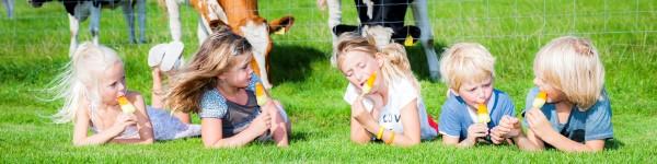 vakantiewoning friesland voor een weekendje weg met de kinderen