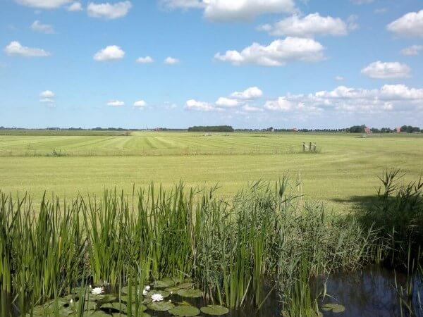 Ihre Ferien Holland mit panoramischer Ausblick über das friesische Platteland