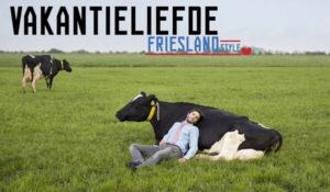 Ontdek Friesland style