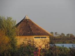 Vogelhut